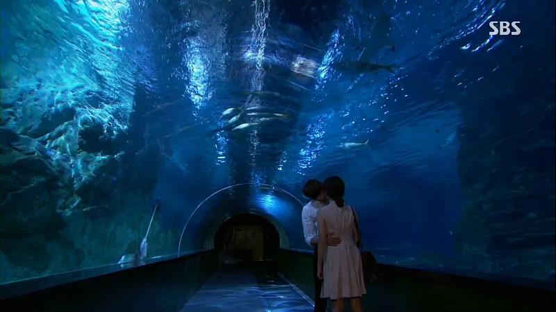 i-can-hear-your-voice-filming-location-episode-8-coex-aquarium-c